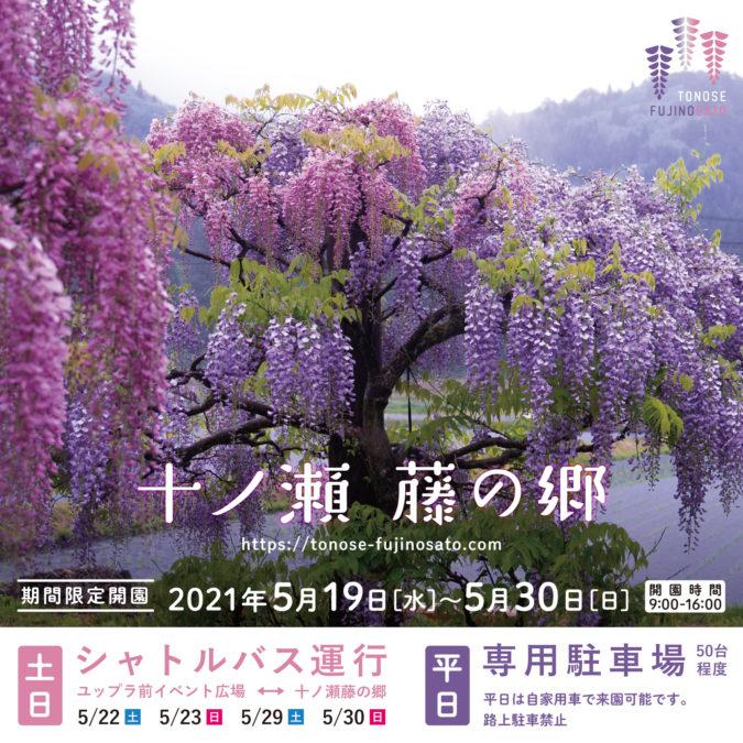 十ノ瀬 藤の郷 2021